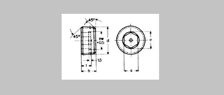 Hex Socket Pipe Plugs [DIN 906]