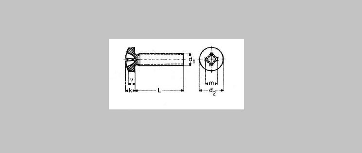 Phillips Pan Head Machine Screws [DIN 7985]