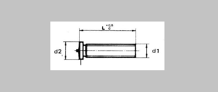 Weld Studs [DIN 32501/1]